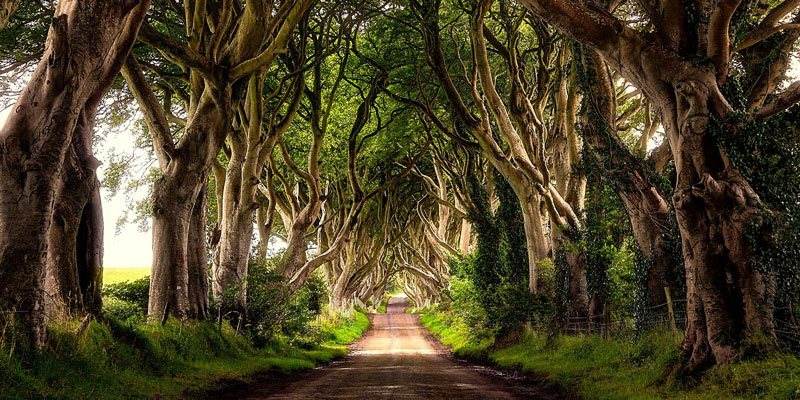 Belfast Mini Coach Tours – Game of Thrones Tour